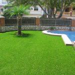 Na co zwrócić uwagę wybierając trawę do swojego ogrodu?